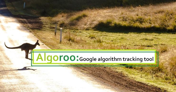Google algorithm tracking tool Algoroo