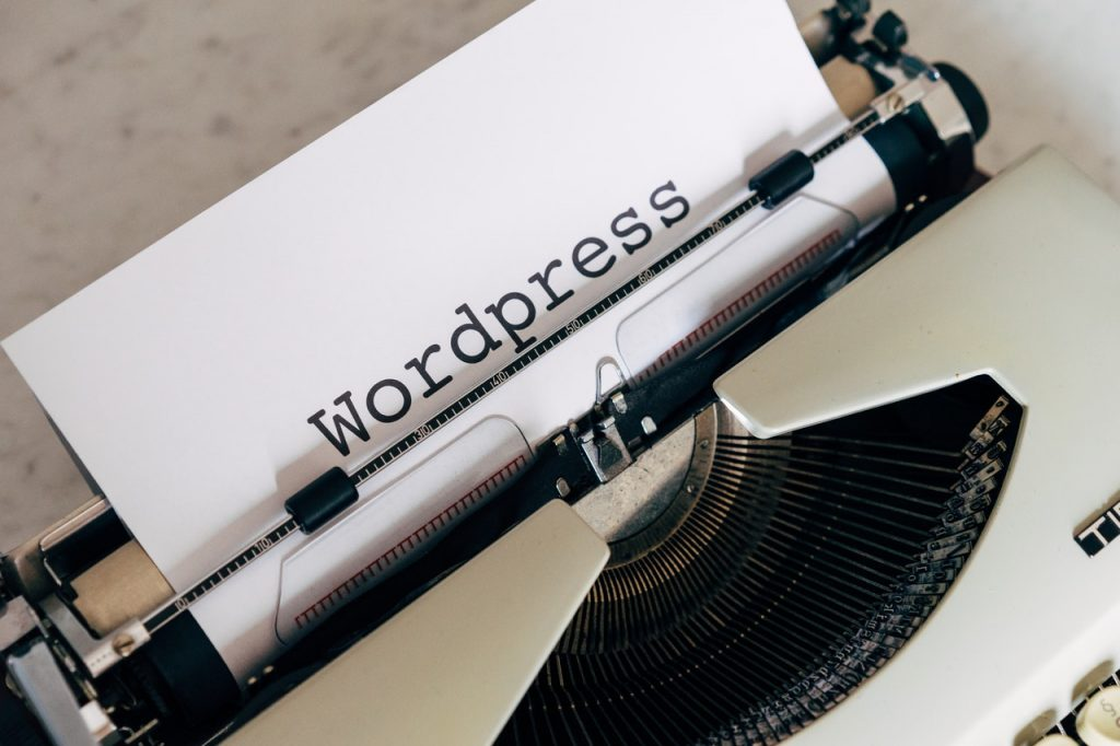 pros and cons of wordpress plugins